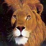 Animalele ca simbol