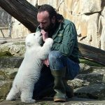 Adio Knut