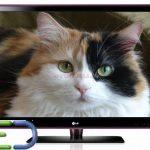 Televizoarele LED si avantajele lor