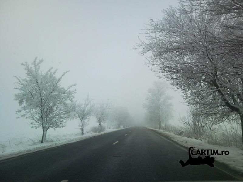 In ceata