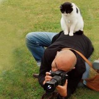 Fotograful si pisoiul: