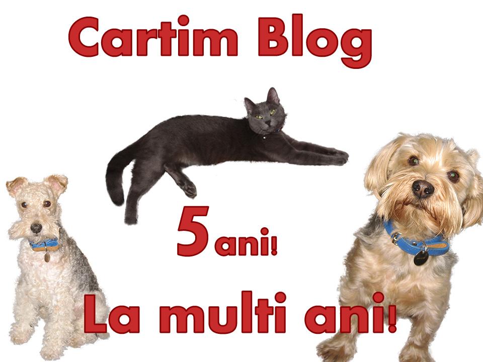 LMA-Cartim1(1)