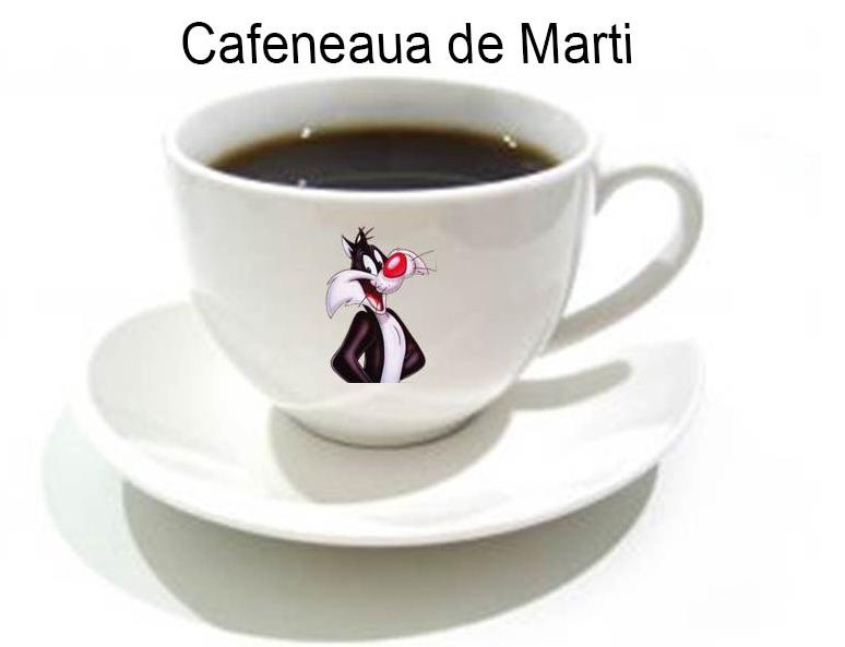 Cafeneua de Marti