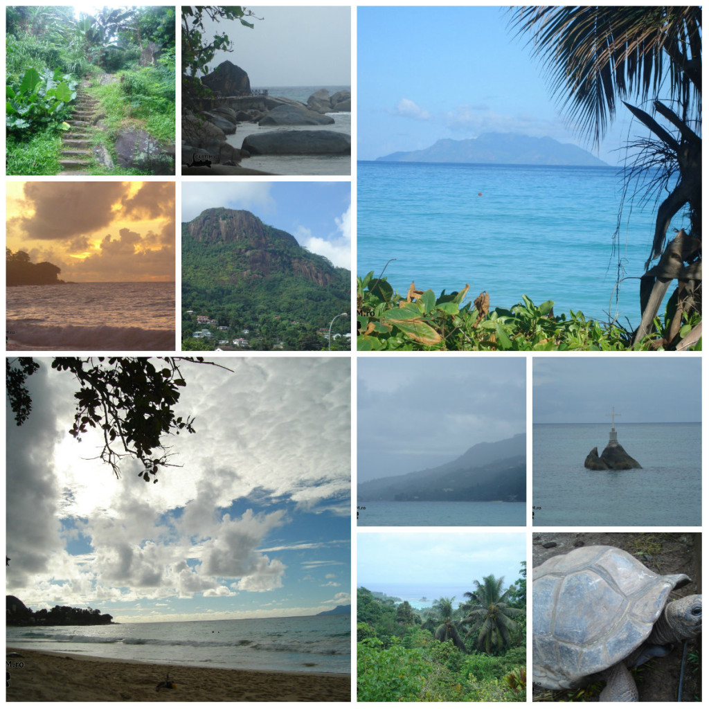 collage Seychelles