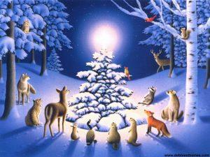 Snow_Animals_Wallpaper
