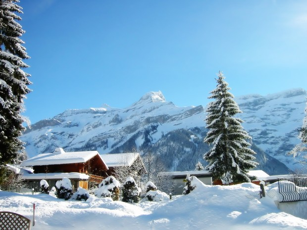 Winter-Holiday-Background-620x465